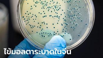 จีนเผยแบคทีเรียไข้มอลตา รั่วจากบริษัทยา! ระบาดเมืองหลานโจว ติดเชื้อแล้วหลายพันคน