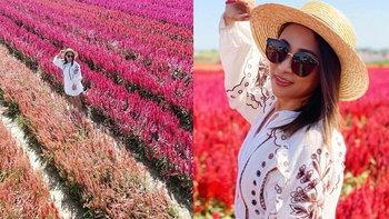 """""""ลาล่า อาร์สยาม"""" แชร์ประสบการณ์ จ้างโดรนถ่ายรูปทุ่งดอกไม้ เสียใจกับสิ่งที่ได้มาก"""