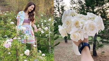 """""""มิว นิษฐา"""" อวดสวนกุหลาบแปลงใหญ่ ปลูกโดยต้นไม้ที่นำมาจากงานแต่งตัวเอง"""