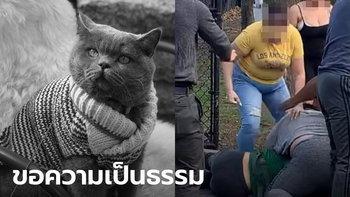 โลกออนไลน์เรียกร้องความยุติธรรม หลังหญิงไทยในสหรัฐถูกครอบครัวโหดทำร้าย-แมวตาย