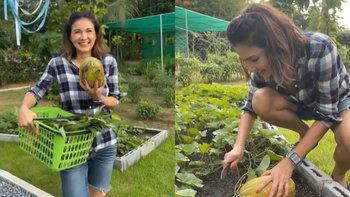 """""""แอน สิเรียม"""" เก็บแตงไทยในสวนผักปลูกเอง มุมโปรดในบ้านหรูผลผลิตเยอะมาก"""