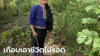 โจรปล้นสวาท โผล่อีกอำเภอ! ป้า 58 ปี หวิดถูกขืนใจกลางป่าเห็ด ฮึดสู้เอาตัวรอด
