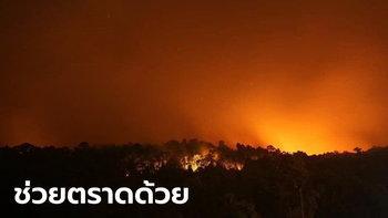 #Saveตราด ไฟไหม้ป่าลุกลามต่อเนื่อง 5 วัน ควันปกคลุมเมือง เสียงระเบิดดังไม่หยุด