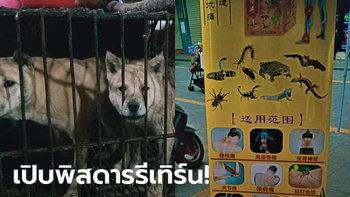 ไม่เข็ดโควิด-19! ตลาดจีนเปิดขายเนื้อสัตว์ป่าอีกแล้ว หลังสถานการณ์เริ่มดีขึ้น