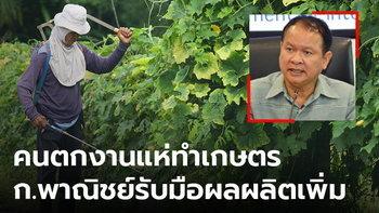 พาณิชย์เตรียมรับมือ ผลผลิตทางการเกษตรเพิ่มขึ้น หลังคนตกงานแห่ทำสวน ทำไร่