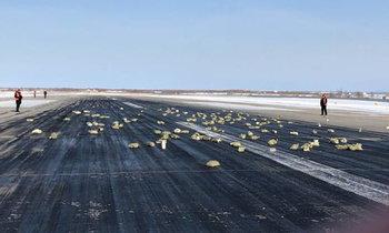 ทองคำแท่งนับหมื่นล้าน ร่วงหล่นเกลื่อนพื้นรันเวย์สนามบินรัสเซีย