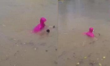นับถือใจ หญิงจีนบิดมอเตอร์ไซค์ไฟฟ้า ลุยน้ำสูงท่วมถึงอก