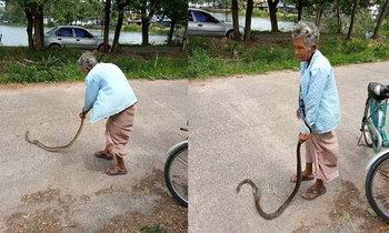 ยายสายโหด! จับงูมือเปล่าฟาดพื้นจนตาย ซ้ำกบยังกระเด็นออกจากปาก