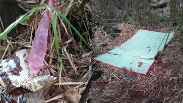 ป่าสวาทหลังโรงเรียน พบถุงยางตกเกลื่อน ชาวเน็ตห่วงยุงกัดขณะทำภารกิจ