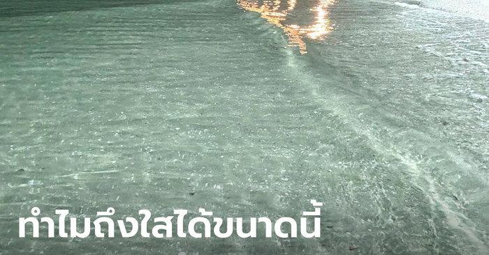 """อ.เจษฎ์ ไขปริศนา """"ทำไมทะเลหาดบางแสน ถึงน้ำใส ตอนหน้าหนาว"""""""