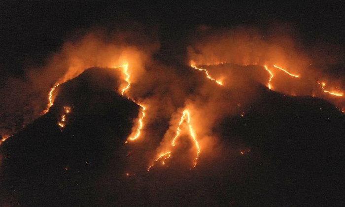 ประธานาธิบดีบราซิลชี้ไฟป่าแอมะซอน