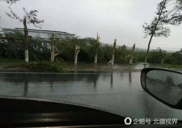 พายุทอร์นาโดจีน