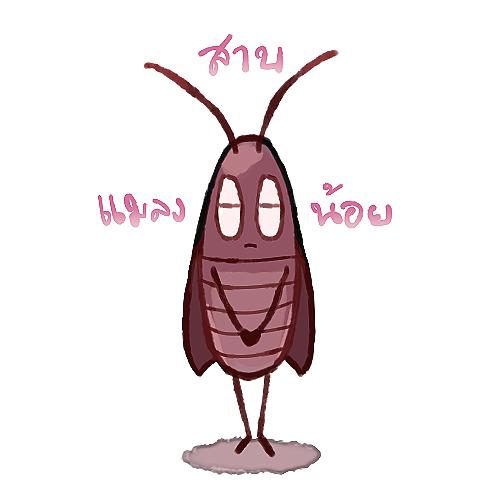 [ แมลงสาบน้อย ]