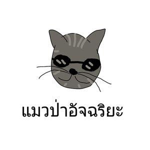นังแมวทัวร์ดจีย์