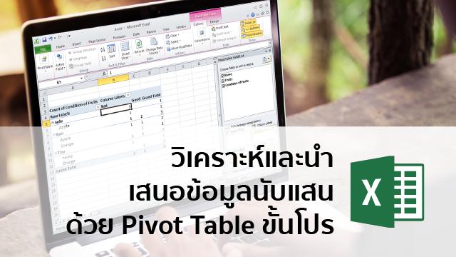 Pre to Pro Pivot Table วิเคราะห์และนำเสนอข้อมูลนับแสนด้วย Pivot Table ขั้นโปร