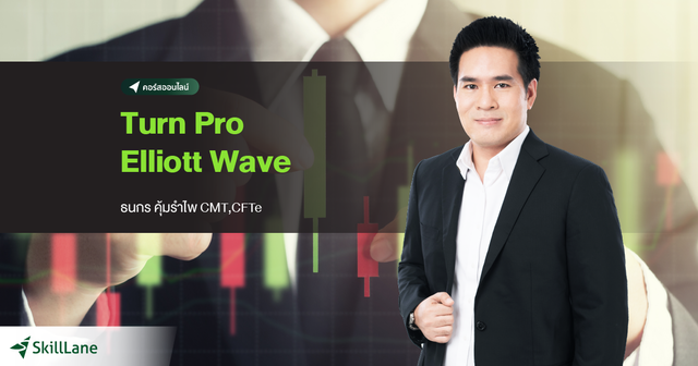 Turn Pro Elliott Wave