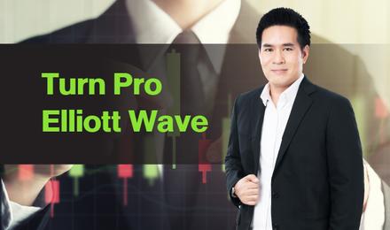 Turn Pro Elliott Wave