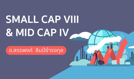 SMALL CAP VIII & MID CAP IV