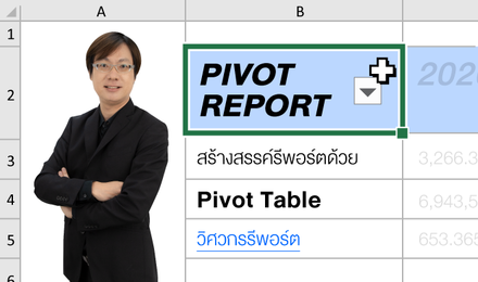 Pivot Report: สร้างสรรค์รีพอร์ตด้วย Pivot Table