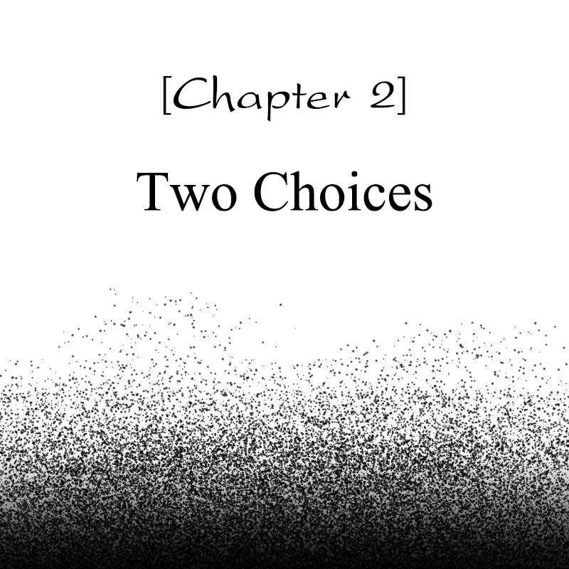 Chapter 2 - Two Choices