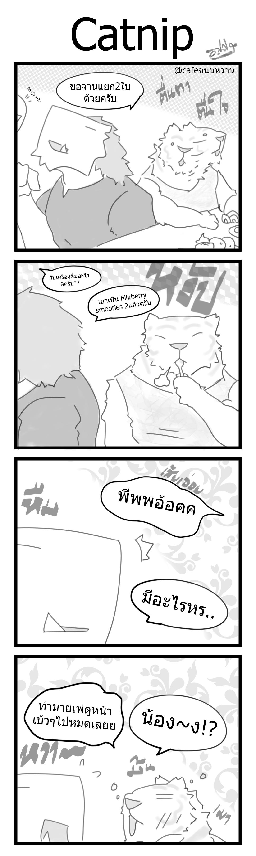 91 - Catnip