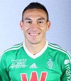 Mevlut Erding (Ligue 1 2013-2014)