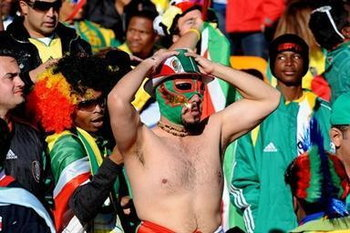 World Cup 2010_Fan_19