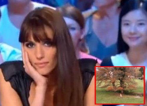 ผู้ประกาศสาวฝรั่งเศสเปลื้องผ้าหลังตราไก่ไปบอลโลก