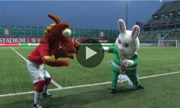 """ชมคลิปมัสคอท """"กระต่ายแก้ว vs มังกรไฟ"""" ดวลเต้นกันกระจาย"""