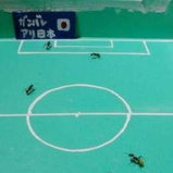 Ant World Cup 2010_5