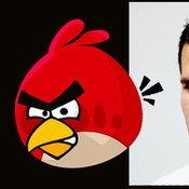 Red birds = van persien