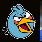 Torres = Blue Birds