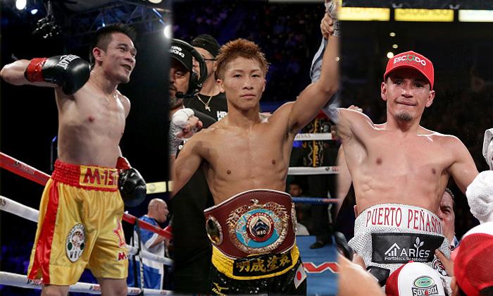 boxingfighty