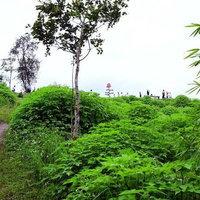ภูเขาฟูจิเมืองไทย