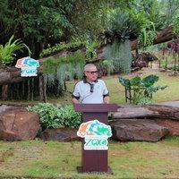 หนูยักษ์คาปิบาร่า และตัวกินมดยักษ์