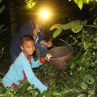 ชาวบ้านหาเห็ดโคนป่าโคราช