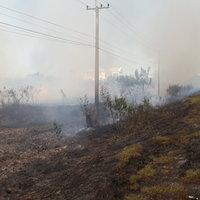 มือบอนลอบเผาหญ้าข้างทางลามหวิดเผาบ้านประชาชน