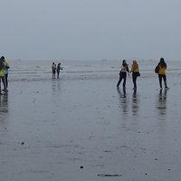 ชาวบ้านสตูลหาหอยท้ายเภาสร้างรายได้
