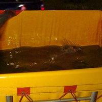 รถบรรทุกปลาคว่ำ เทกระจาดปลาลงรางรถไฟ