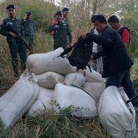 ตชด.146 จับชาวเมียนมาลอบขนกระท่อมผงกว่าครึ่งตันเข้าไทย