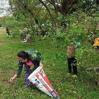 ชาวบ้านแห่จับดักแด้หนอนผีเสื้อ กิโลละ 400-500 บาท