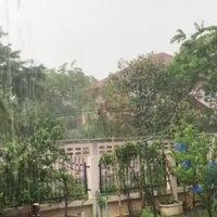 ฝนตกลมแรงลูกเห็บถล่มวัดป่าภูทับเบิก ขาวโพลน