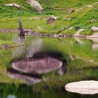 ชวนชม! ฝูงผีเสื้อหลากสีอ่างเก็บน้ำคลองป่าบอน จ.พัทลุง