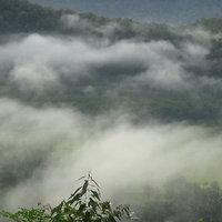 จุดชมวิวภูกะโดน ชมความงามทะเลหมอกเทือกเขาสันกาลาคีรี