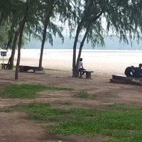 สวยอันตราย! ชายหาดสมิหลาอันตรายแมงกะพรุนพิษอาละวาด