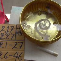 แห่ขอเลขเด็ดแม่ตะเคียนวัดดังอ่างทอง หลังพบมีมากที่สุดในประเทศ