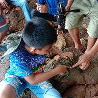 บุกพิสูจน์ นิ้วหินบนเกาะคอเขา อ.ตะกั่วป่า ความมหัศจรรย์ของธรรมชาติ