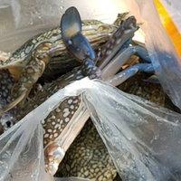จับกุ้งมังกรเจ็ดสีตัวเกือบโล ตัวแรกในรอบ 10 ปี