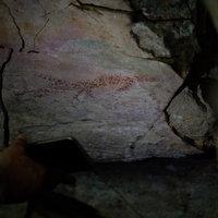 สวยงาม! ค้นพบภาพวาดโบราณอายุกว่า 2,000 ปี บนจุดชมวิวหินช้างสี