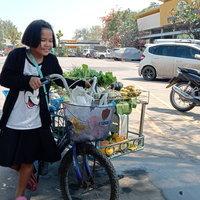 หัวใจแกร่ง! ชื่นชมเด็กหญิง ป.4 ปั่นสามล้อพ่วงเร่ขายผักหาเงินช่วยเหลือครอบครัว
